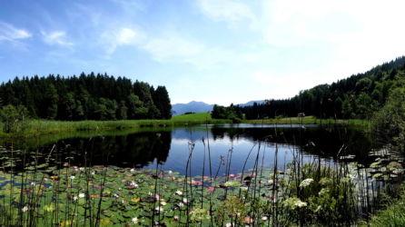 """Naturschutzgebiet """" Egelsee"""""""